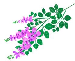 ハギ,盆栽,育て方,作り方
